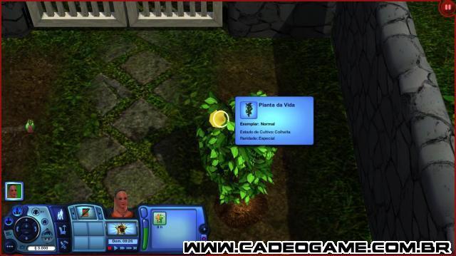 http://www.cadeogame.com.br/z1img/07_10_2011__22_33_0736185ff9ae87202812f61ddba9a324716d917_640x480.jpg