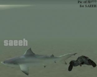 Grand Theft Auto San Andreas [GTA] 11_02_2008__11_03_2167798af17b16955c3ffbefa17df3d7b46b7ea_312x312