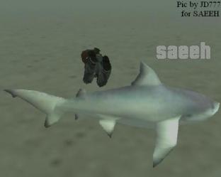 Grand Theft Auto San Andreas [GTA] 11_02_2008__11_03_22625854440f1a414885dc322b267466c0878eb_312x312
