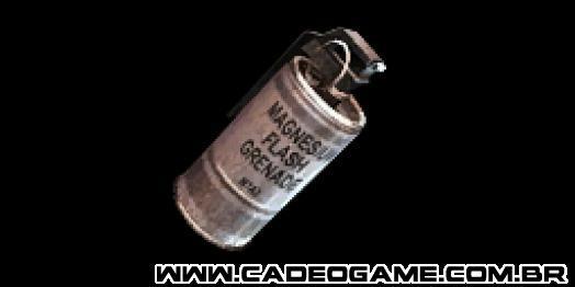 http://images1.wikia.nocookie.net/__cb20100819223461/cs/images/4/4d/Flashbanghud_cz.png