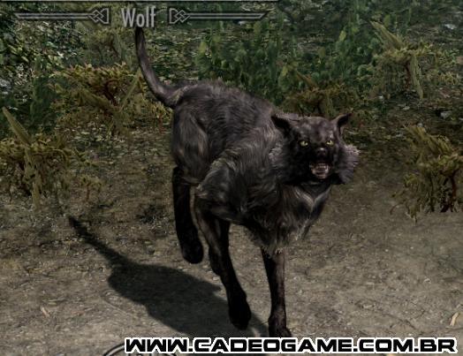 http://images3.wikia.nocookie.net/__cb20120129115744/elderscrolls/es/images/6/60/Lobo_1.jpg