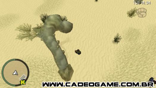 http://www.gtamind.com.br/cw/paginas/curiosidades/se/coqueiro/1.jpg