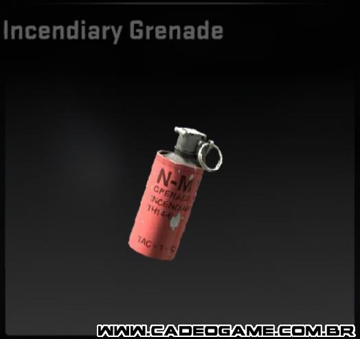 http://images2.wikia.nocookie.net/__cb20120426015829/cs/images/3/3b/Csgoincendiarygrenade.png