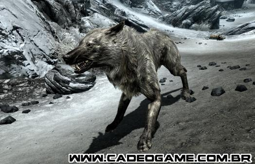 http://images.wikia.com/elderscrolls/images/6/69/Ice_Wolf_(Skyrim).png